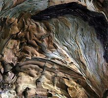 Magic Tree Trunk by patjila