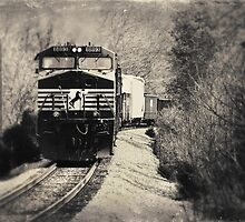 On a Rail by Greg Booher