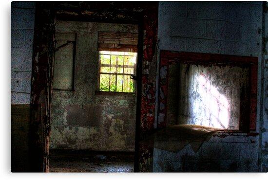 Winking Window by Okeesworld