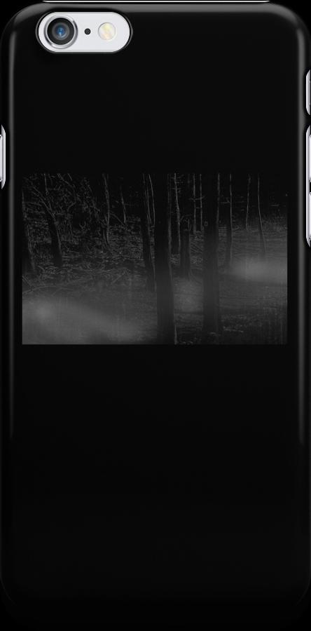 Foggy Woods by Denise Abé