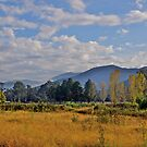 Autumn at Bright in the Victorian highlands. by johnrf