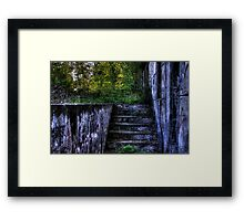 Ascending from Decay Framed Print