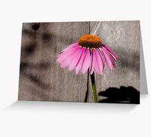 Purple Cone & Shadow Greeting Card