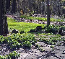 Garden Path by teresa731