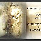 Photo Painters Challenge Winner Banner  by Carmen Holly