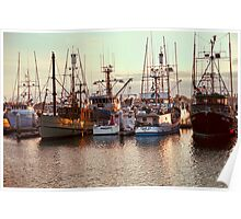 Commercial Fishing Boats Docked in San Diego Harbor Poster