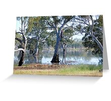 Mallee Forest and Wetlands Greeting Card