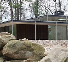 Mid Century Modern -Lee House 2 by Jane McDougall