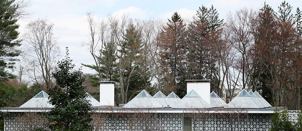 Mid Century Modern - Celanese House by Jane McDougall