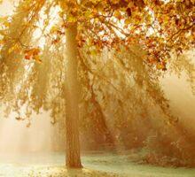 Autumn sunburst Sticker