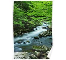 Spring on the Middle Prong River, Tremont, TN Poster