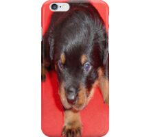 """And they call it """"Puppy Love"""" ..... iPhone Case/Skin"""