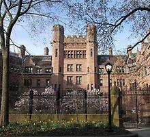 Yale Gothic Quadrangle by Jane McDougall