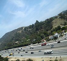 LA Freeway by Jane McDougall