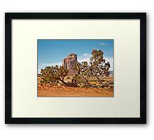 Wildcat Trail Framed Print