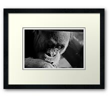 A pensive look Framed Print
