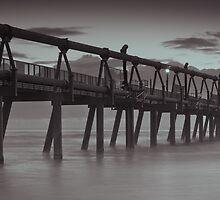 The Spit, Surfers Paradise, Australia by Dean Bailey