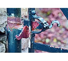 Rusty Gate Latch Photographic Print