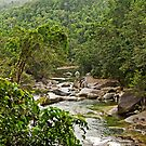 Wooroonooran Rainforest - Babinda Creek by TonyCrehan