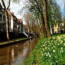 Once again it is spring in Utrecht by jchanders