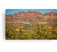Elder Range Canvas Print