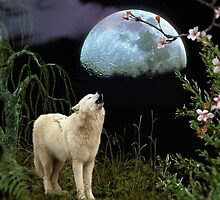 Shout at the Moon by Morag Bates