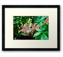 Flower Stem, Kew Gardens Framed Print