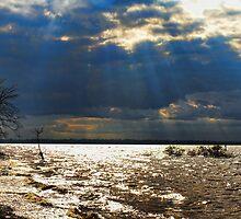 Heavenly Light by Carolyn  Fletcher