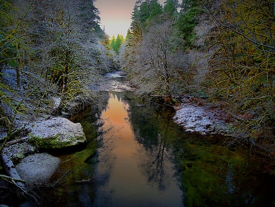 Snow and Dim Light by Charles &amp; Patricia   Harkins ~ Picture Oregon