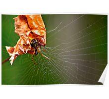 Garden Critters 3 Poster