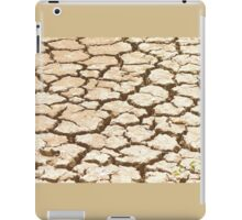 Cracked Mud. iPad Case/Skin