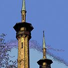 """The Irem Temple"" by Gail Jones"