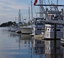 Boats waiting by Brenda  Meeks