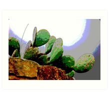 Cactus on a hillside  Art Print
