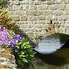 Still waters..... by supernan