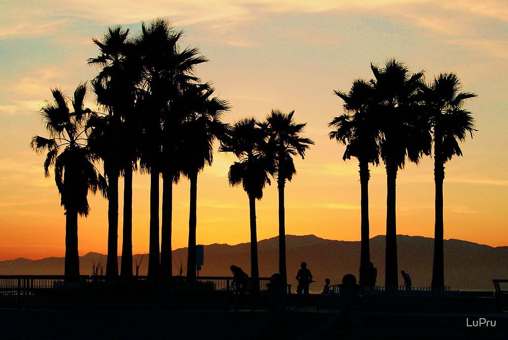 Sunset Skate by LuPru
