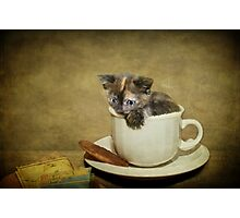 Having a 'Cat'puccino on the way to 'Cat'mando  Photographic Print