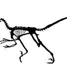 Dinosaur dance by Robert Down