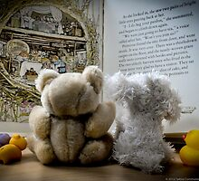 Theodore reads a bedtime story by Susana Weber