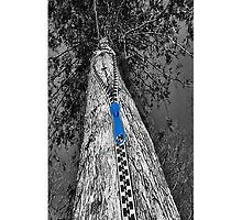 ☜♥☞TREE WITH A ZIPPED POINT OF VIEW IPHONE CASE ☜♥☞ by ✿✿ Bonita ✿✿ ђєℓℓσ