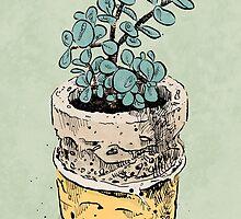jade plant by pixbyrichard