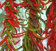 Strung and Hanging Red and Green Chili Peppers Drying Sticker