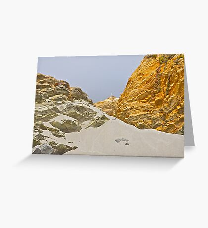 Sandy Sculptures Greeting Card