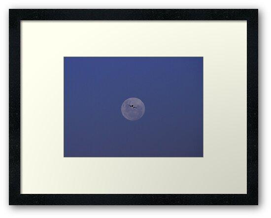 Moon and Jetliner by Noel Elliot