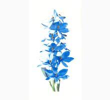 Blue Lady Orchid (Thelymitra crinita) Unisex T-Shirt