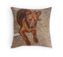Little Gracie Throw Pillow