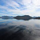 Lake Pedder reflections by gaylene