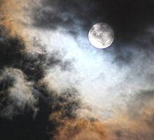 Wild Moon by Omar Dakhane