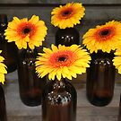 Gerbera Bottles by Emma Holmes