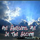 He Shelters Me In The Storm by Vince Scaglione
